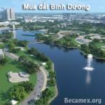 mua-dat-Binh-Duong
