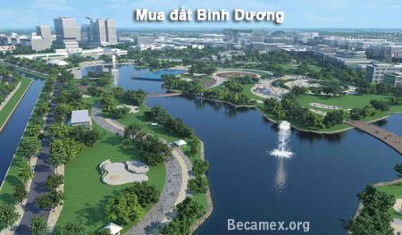 Cần mua đất Bình Dương giá cao
